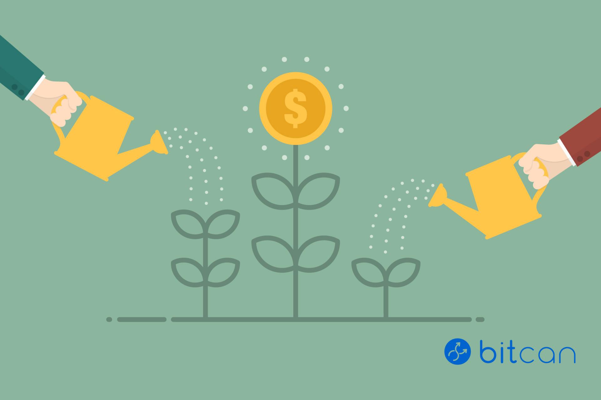Jak inwestować w Bitcoin – poradnik dla początkujących na giełdzie.