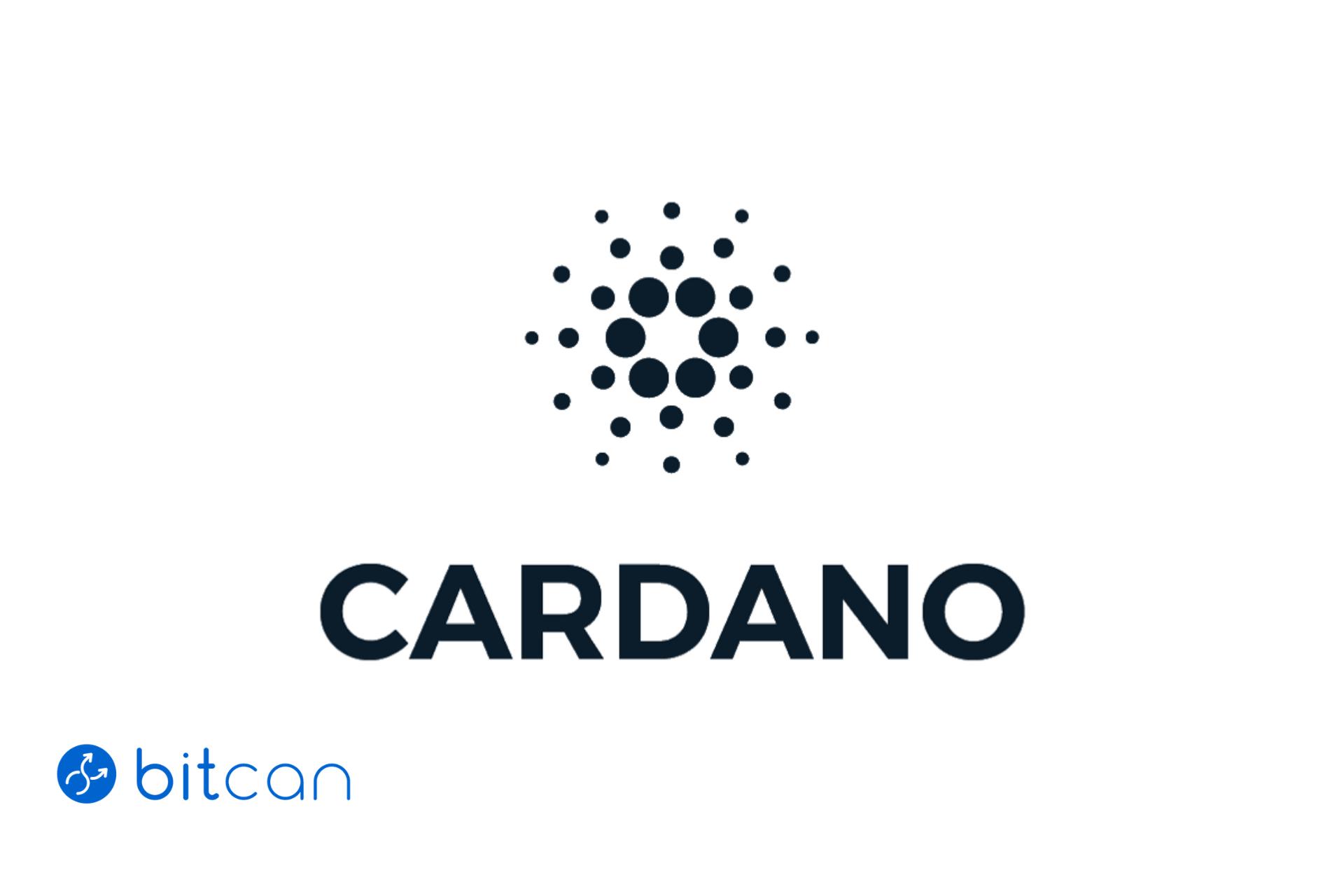 Co to jest Cardano? Opis projektu i kryptowaluty ADA