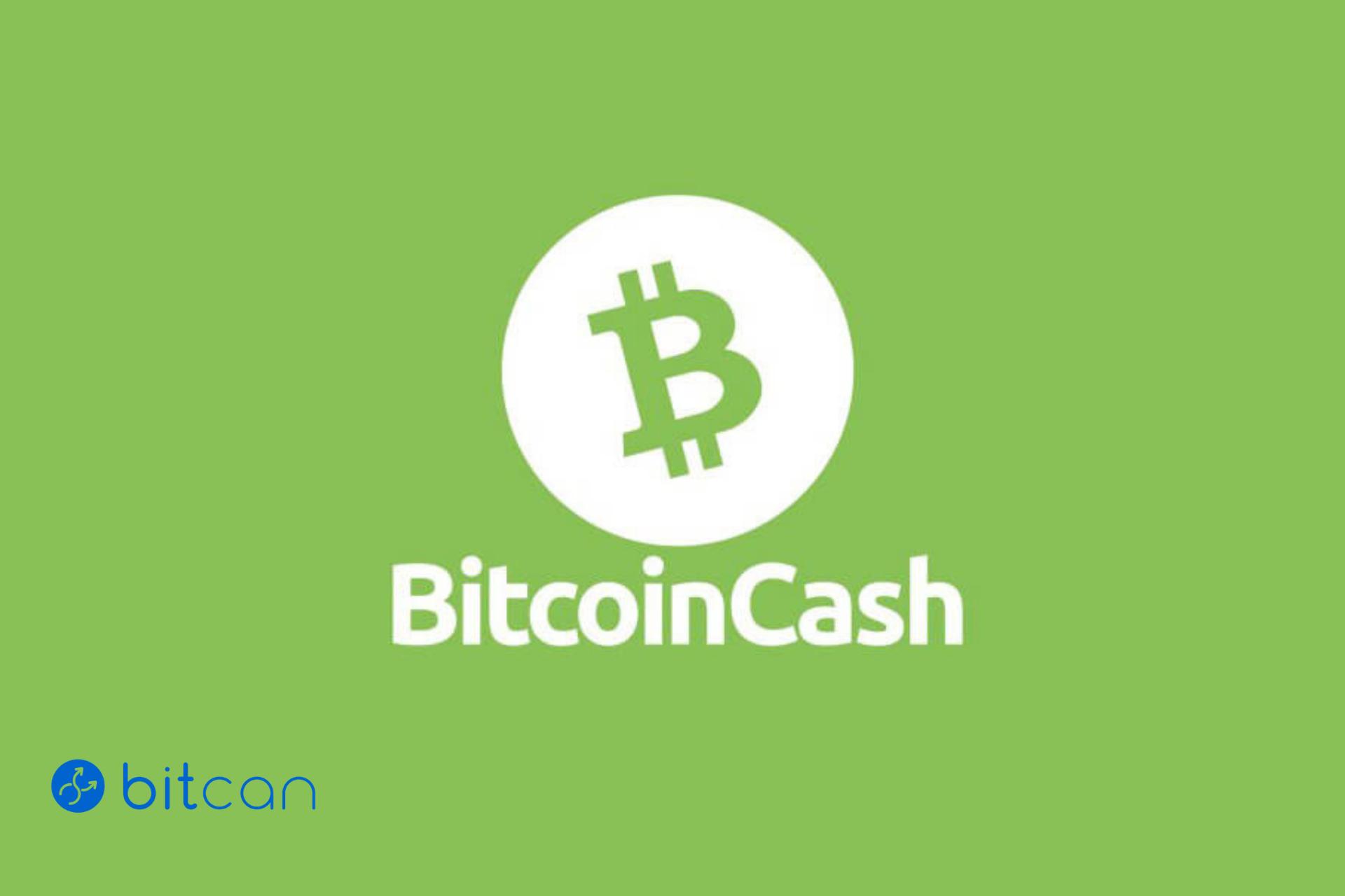 Skąd wziął się Bitcoin Cash?