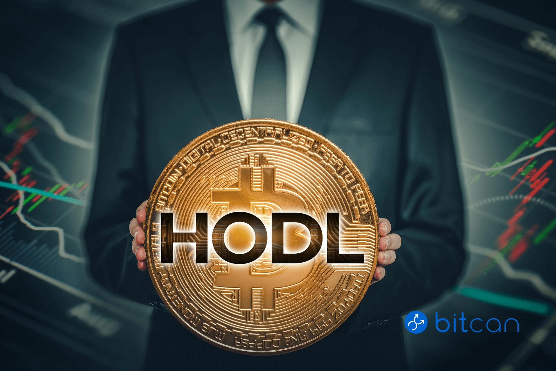 HODL, czyli HOLD. Co oznacza popularne trzymaj na rynku bitcoina