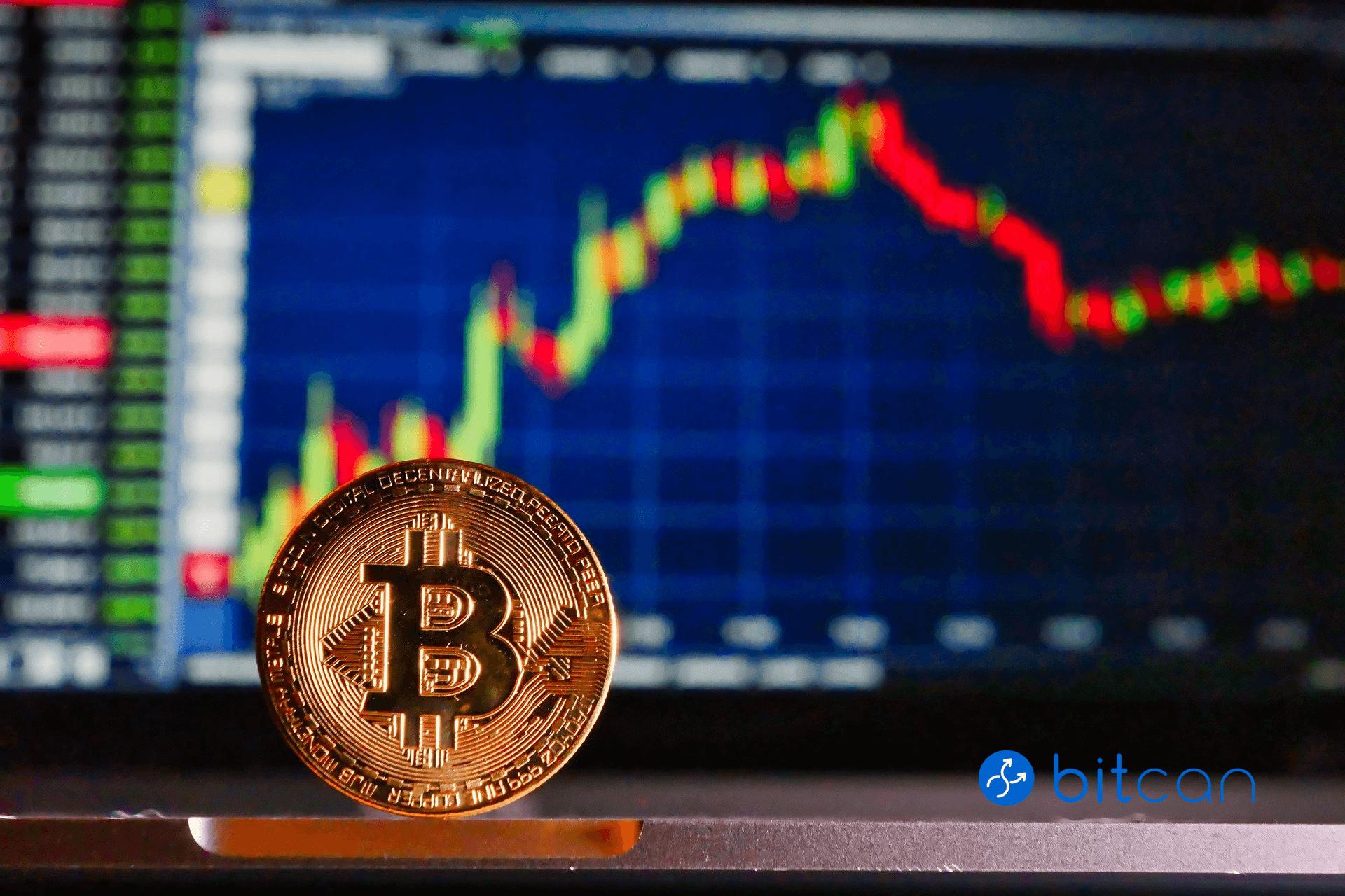 Jak uchronić się przed spekulacją w bitcoinie?