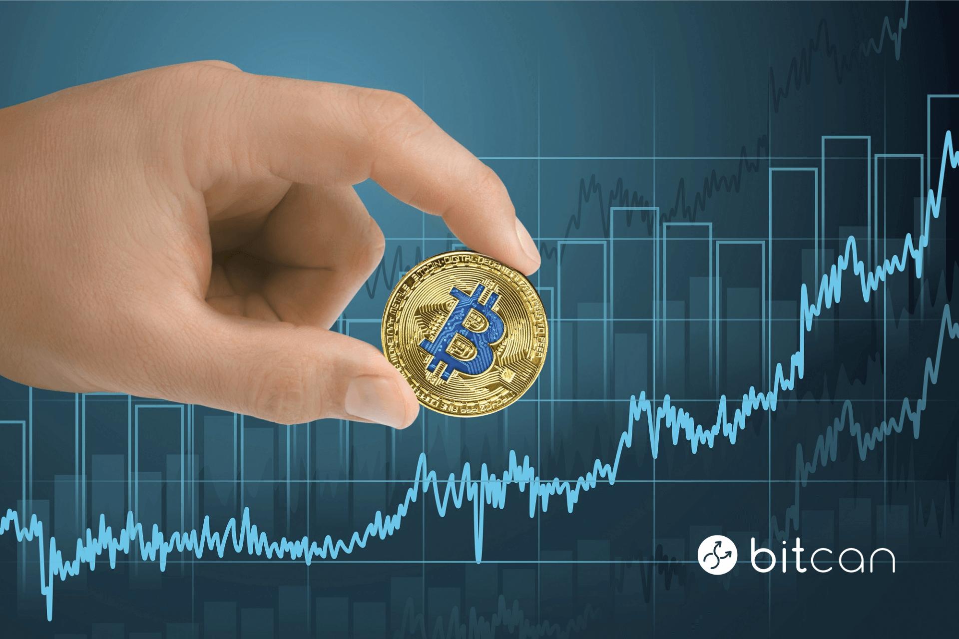 Znany analityk: do grudnia 2021 r. bitcoin osiągnie poziom 200 000 USD.