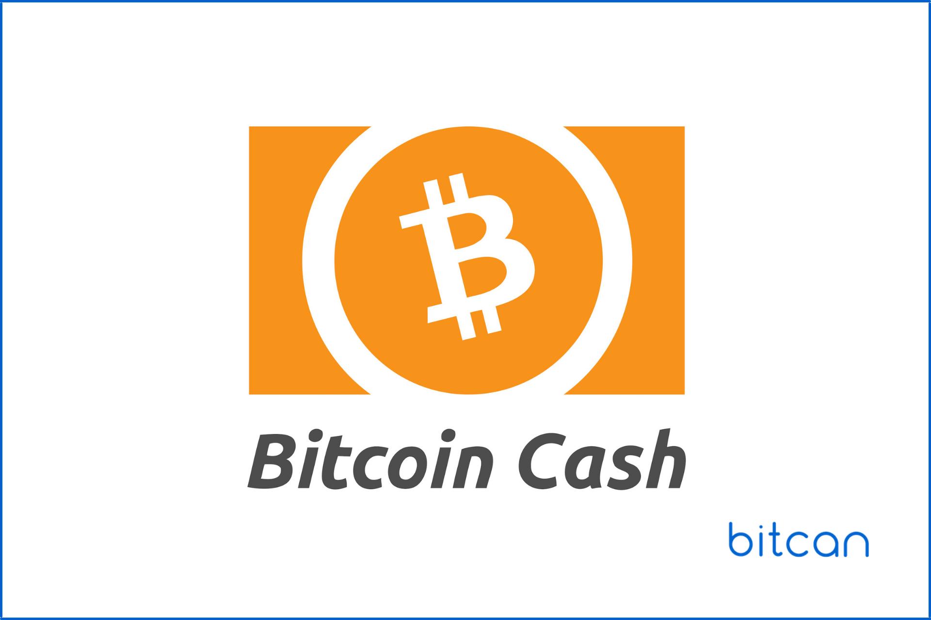 Obecna wartość Bitcoin Cash to tylko ok. 1% wartości bitcoina