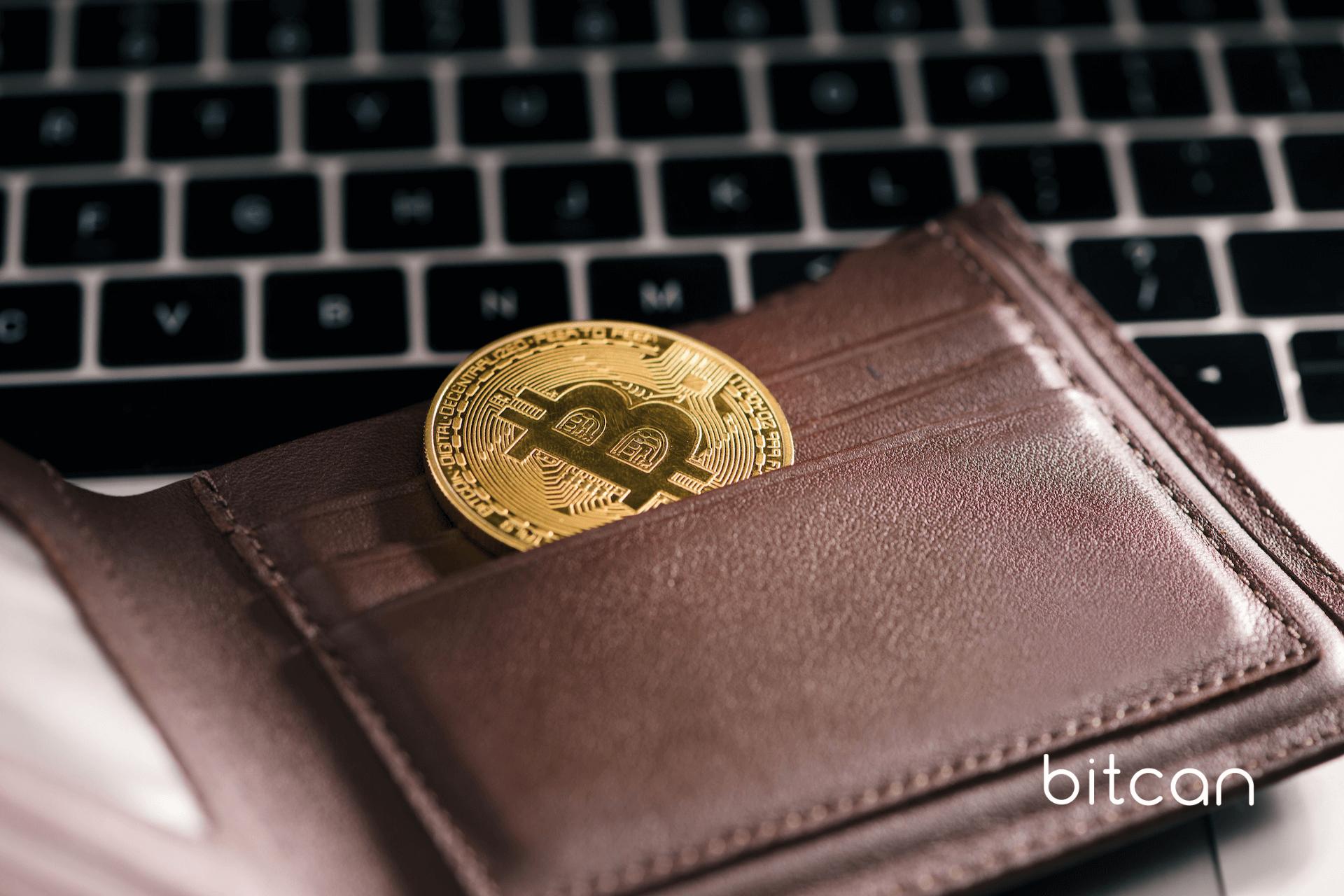 Portfele kryptowalutowe — najpopularniejsze portfele do bitcoina (przegląd portfeli różnych rodzajów)