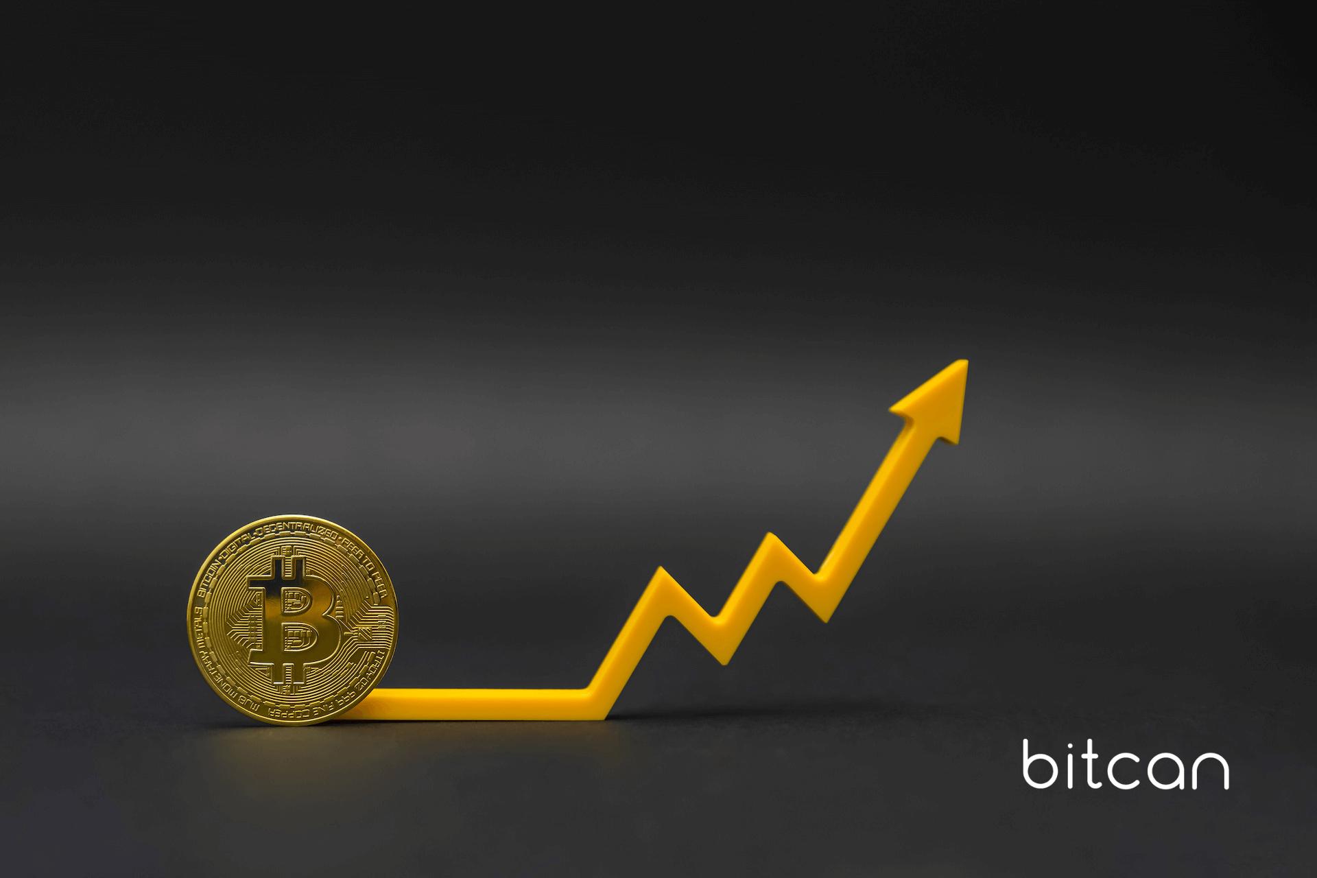Inwestycja w kryptowaluty bitcoin — kurs który rośnie nieprzerwanie od 2013 roku