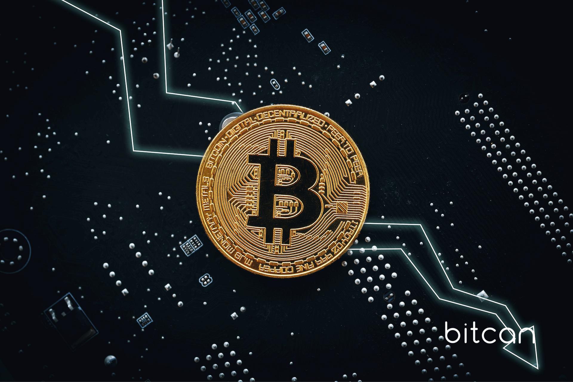 Bitcoin wróci do wzrostów. BTC sprzedali jedynie gracze krótkoterminowi