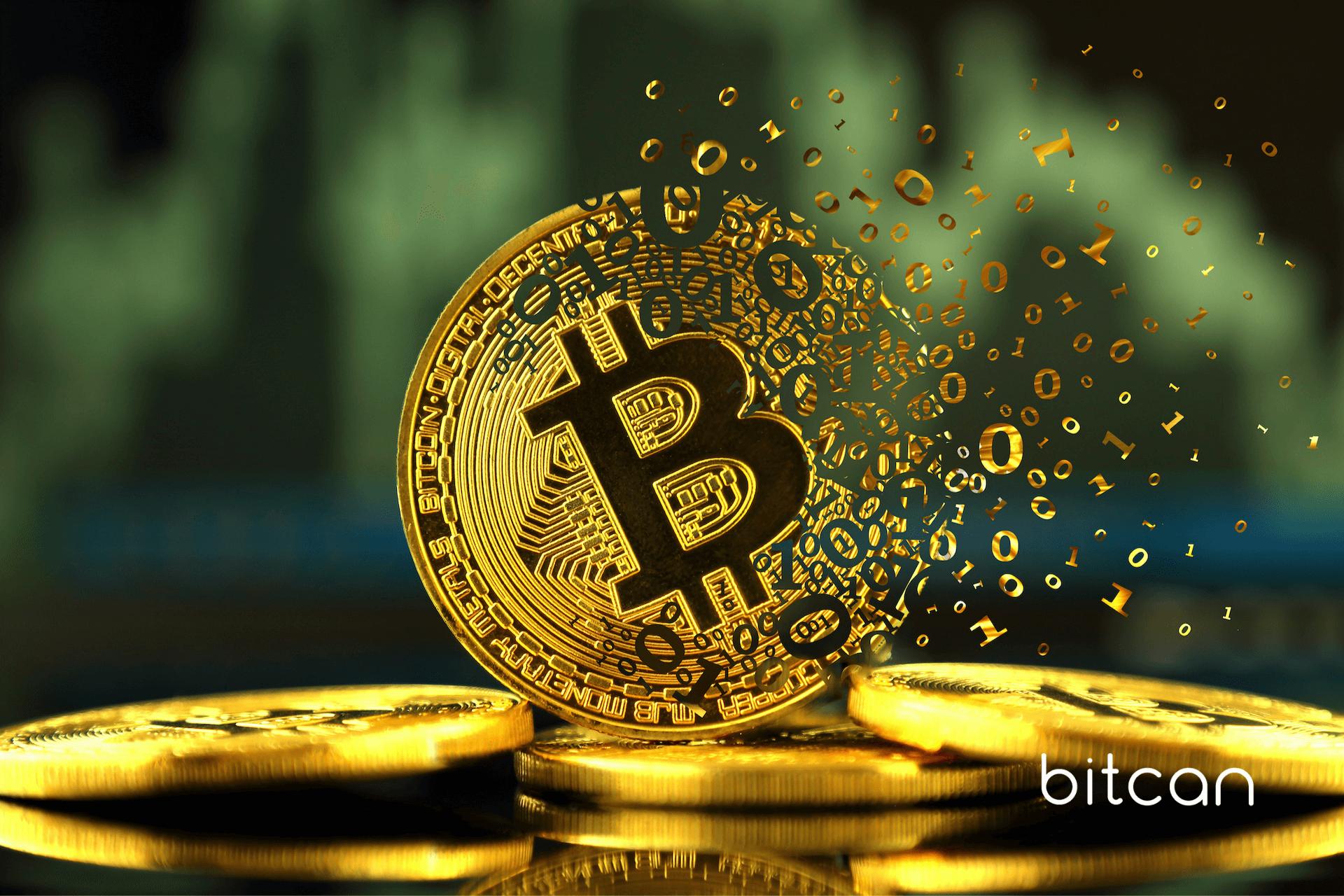 Bitcoin wyprzedawany w panice przez rajd spadkowy. Kto pozbywa się BTC?