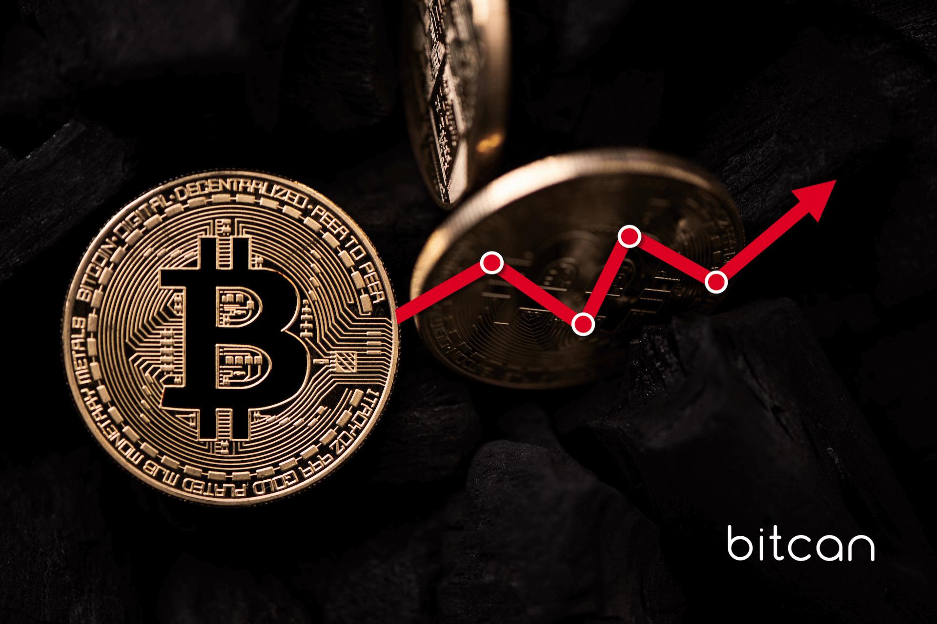 Cena bitcoina prognozowana nawet na milion dolarów. Co wpływa na ciągły wzrost kryptowaluty?