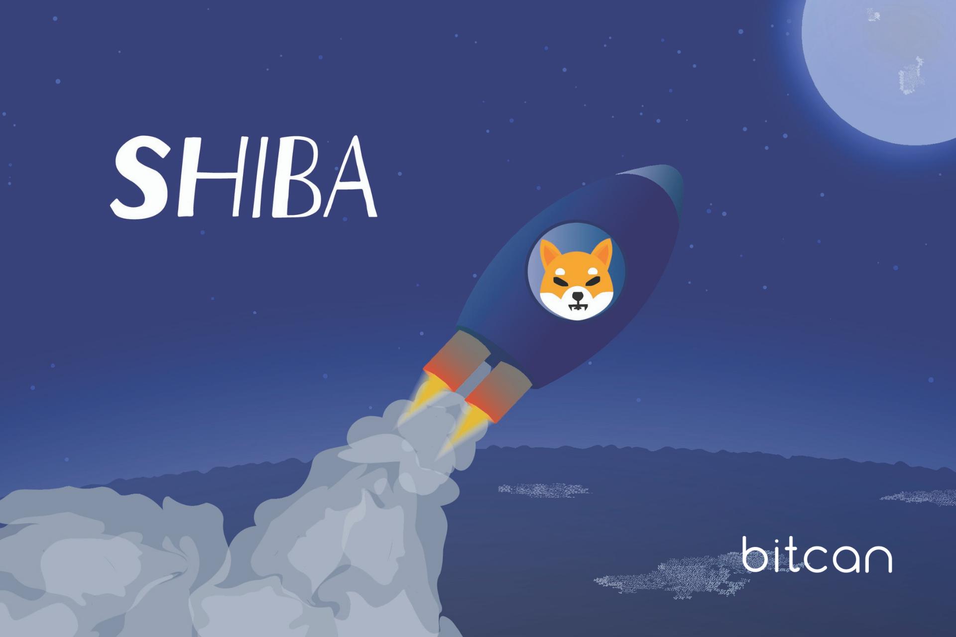 Shiba Inu (SHIB). Podróbka Dogecoina (DOGE), która zyskuje miliony procent
