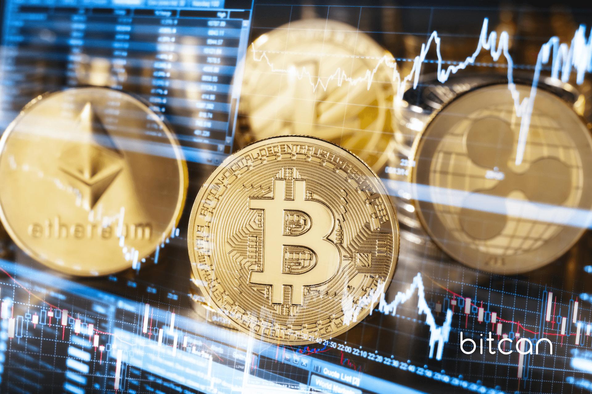 Kryptowalutowa gra o tron, czyli altcoiny, które mogą w przyszłości zastąpić bitcoina