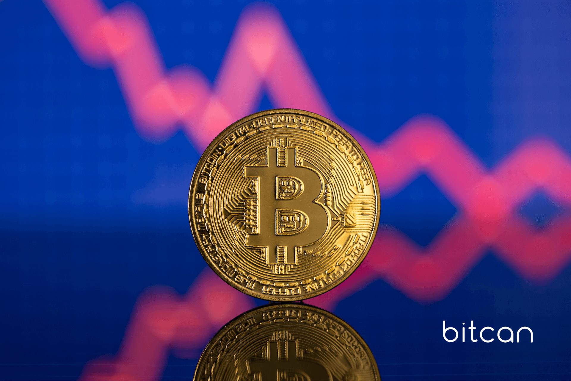 Bitcoin i Ethereum rosną, aktywność on-chain jednak spada. Nietypowa sytuacja na rynku